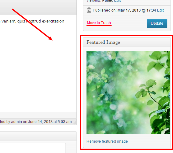 WordPress Admin Featured Image Upload Screenshot